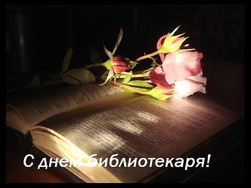 http://static-web-0.kspu.ru/web/images/2012/05/25/2d78d7e2ac815420cb06325097c638c1/s-dnem-bibliotekarya.jpg