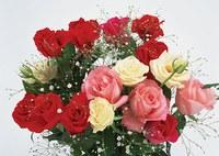 flowers040