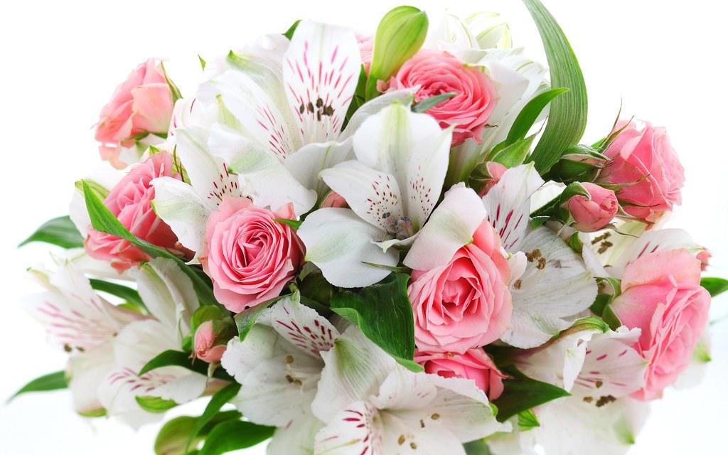 cveti.jpg