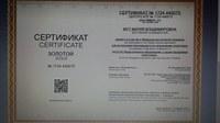 Студентка исторического факультета КГПУ - одна из лучших по результатам ФИЭБ