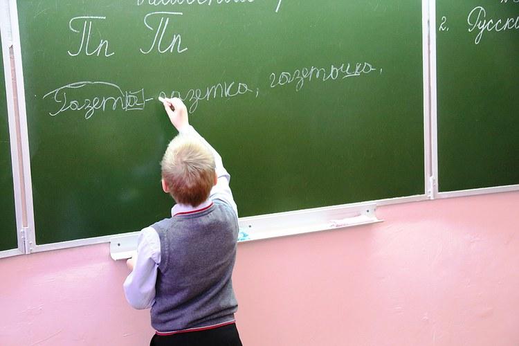 «Обучение русскому языку и литературе в образовательных организациях» по направлению «Образование и педагогика»