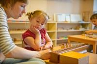 «Теория и практика Монтессори-педагогики» по направлению «Дошкольная педагогика и психология»