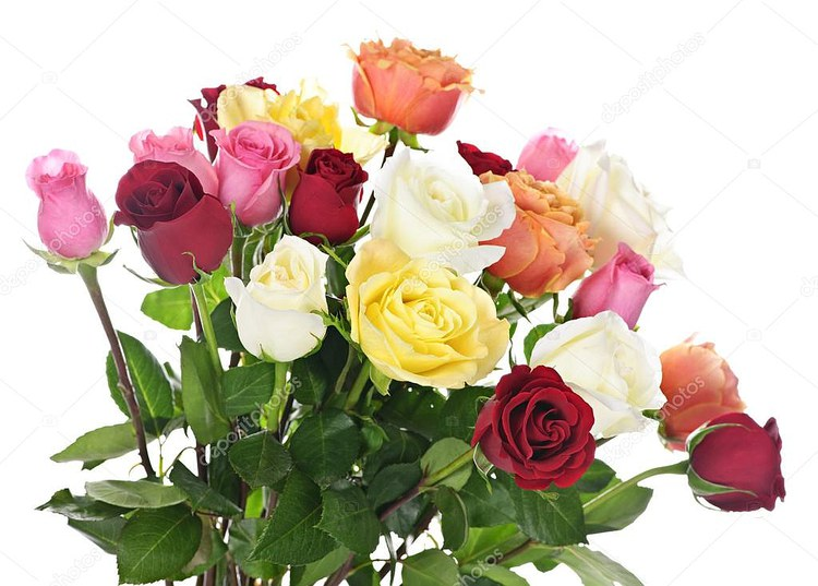 depositphotos_4467129-Bouquet-of-roses