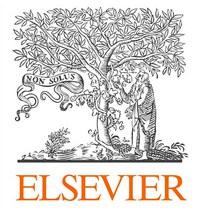 Elsevier для КГПУ им. В.П. Астафьева