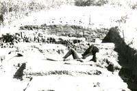 Знаменитая сибирская археология