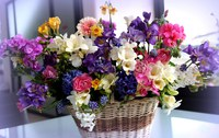 cvety-korzinka-buket-raznye